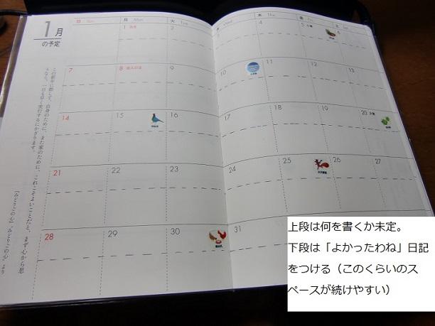 CIMG1267 - コピー.JPG